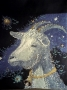 130 Звёздная коза
