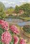 1166 Пионы в цвету