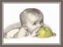 511 Малыш с яблоком
